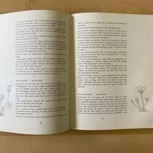 FIRST EDITION 1973 GROWING WILDFLOWERS BOOK